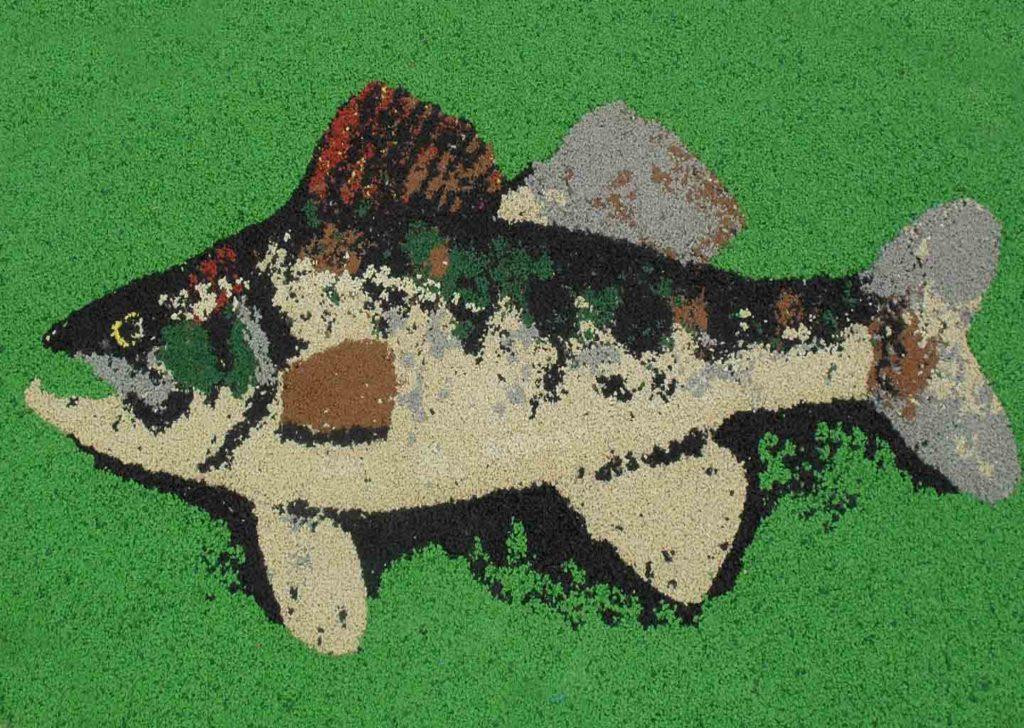 55-sol-poissons